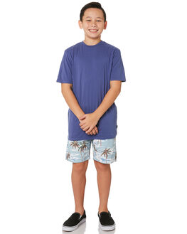 INK KIDS BOYS SWELL TOPS - S3183004INK