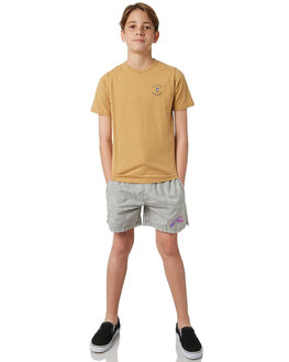 STONE GREY KIDS BOYS RUSTY SHORTS - WKB0297SOG