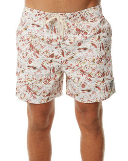 ASSORTED MENS CLOTHING INSIGHT BOARDSHORTS - 5000000350ASS