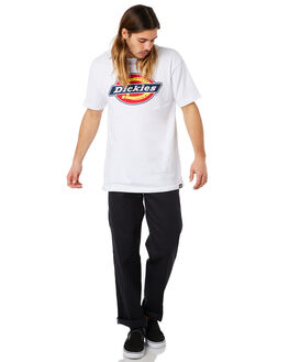 BLACK MENS CLOTHING DICKIES PANTS - 873FBLK