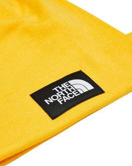 TNF YELLOW TNF BLACK MENS ACCESSORIES THE NORTH FACE HEADWEAR - NF0A3FNTLR0