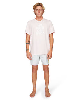 CEMENT MENS CLOTHING RVCA BOARDSHORTS - RV-R192405-CEM