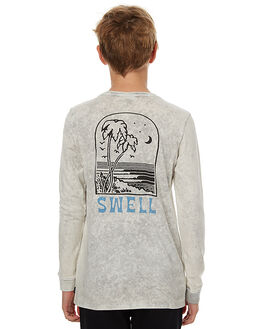 ACID GREY KIDS BOYS SWELL TEES - S3173104BLK
