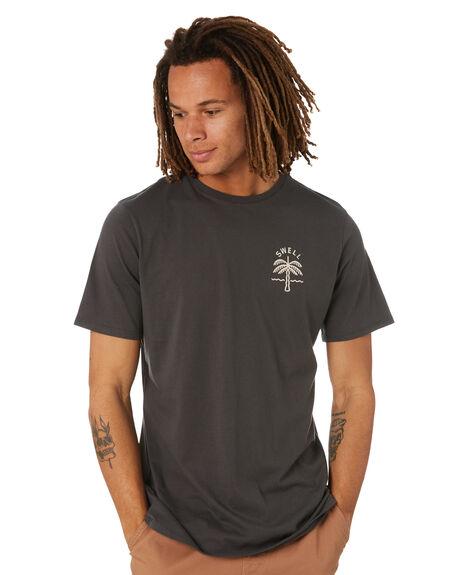ASH MENS CLOTHING SWELL TEES - S5202006ASH