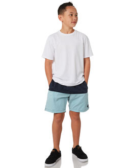 BLUE KIDS BOYS SWELL SHORTS - S3184235BLUE
