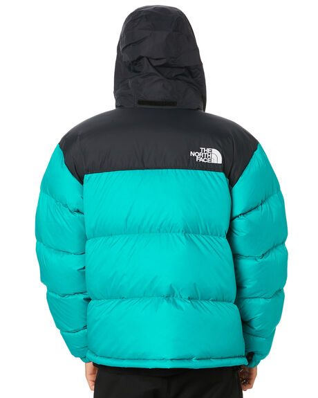 JAIDEN GREEN MENS CLOTHING THE NORTH FACE JACKETS - NF0A3C8DH8E
