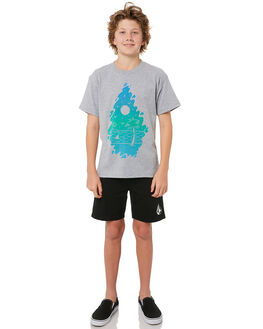 HEATHER GREY KIDS BOYS VOLCOM TEES - C57117D0HGR