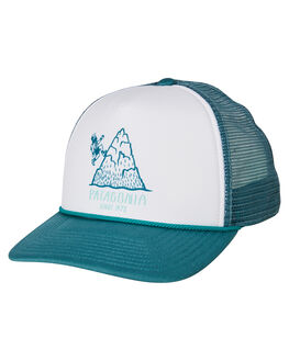 TASMANIAN TEAL MENS ACCESSORIES PATAGONIA HEADWEAR - 38237TATE