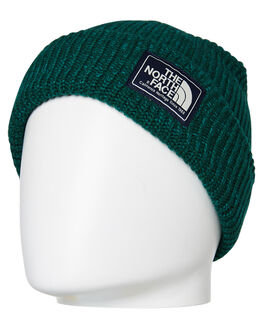 BOTANICAL GARDEN MENS ACCESSORIES THE NORTH FACE HEADWEAR - NF0A3FJW5RG