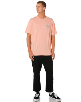 MELON MENS CLOTHING STUSSY TEES - ST096000MEL