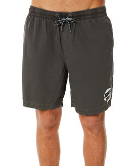 STONE MENS CLOTHING SANTA CRUZ BOARDSHORTS - SC-MBC8076STN