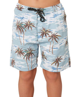 FLORAL KIDS BOYS SWELL BOARDSHORTS - S3193235FLORL