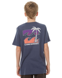 WASHED SLATE KIDS BOYS BILLABONG TEES - 8571019SLA