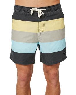 ASHPHALT MENS CLOTHING THE CRITICAL SLIDE SOCIETY BOARDSHORTS - WSB1712ASP