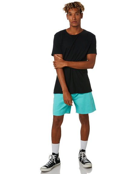 MINT MENS CLOTHING SWELL BOARDSHORTS - S5164231MINT