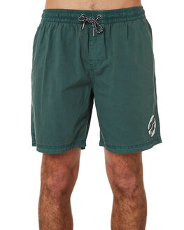 GREEN MENS CLOTHING SANTA CRUZ BOARDSHORTS - SC-MBC8076GRN