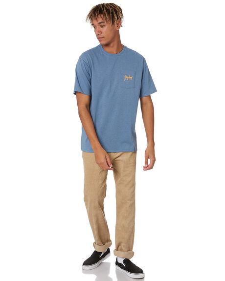 PIGEON BLUE MENS CLOTHING PATAGONIA TEES - 38509PGBE
