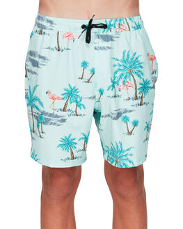 AQUA KIDS BOYS BILLABONG BOARDSHORTS - BB-8592419-A10