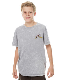 STONE GREY KIDS BOYS RUSTY TEES - TTB0543SOG