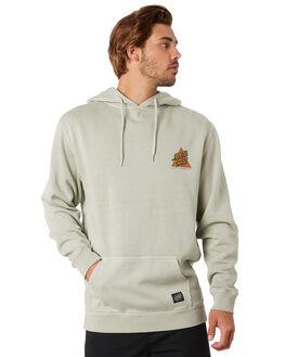 PIGMENT MIST MENS CLOTHING SANTA CRUZ JUMPERS - SC-MFA0579PIGMS