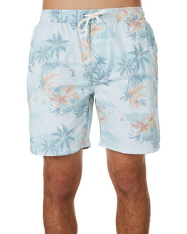 SKY MENS CLOTHING SWELL BOARDSHORTS - S5202241SKY