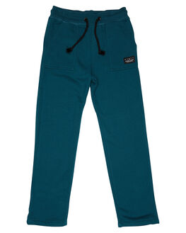 WASHED SEA GREEN KIDS TODDLER BOYS RUSTY PANTS - PAR0190WSG