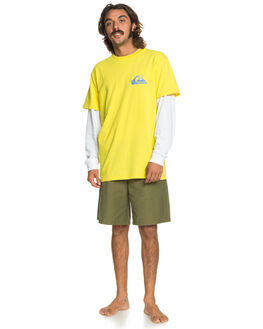 BUTTERCUP MENS CLOTHING QUIKSILVER TEES - EQYZT05736-YGP0