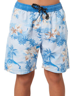 BLUE KIDS BOYS SWELL SHORTS - S3184233BLUE